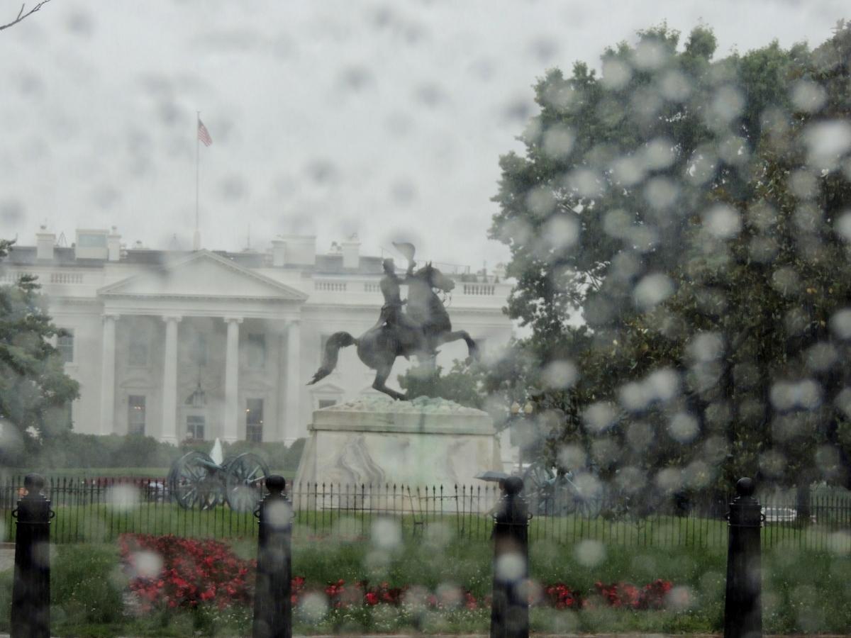 Washington Rain