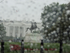 Washington Rain