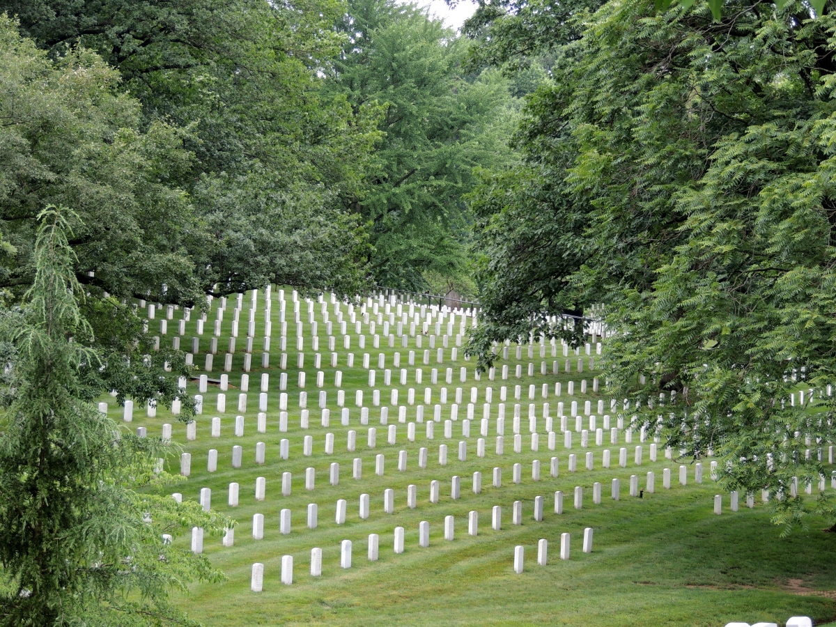 Arlington – In Memory of our Fallen
