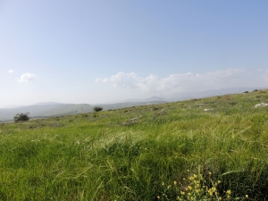 Mt. Arbel, Galilee, Israel photo captured March 2014