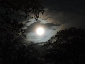 September's Harvest Moon -2015