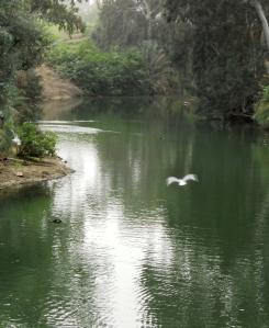 Yardinet Baptism site - Jordan River, Israel