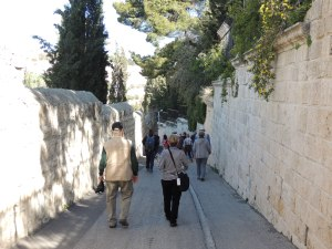 Pilgrims descent down the Mount of Olives