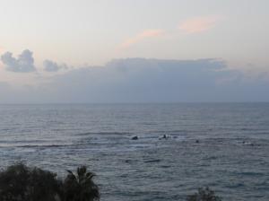 noon waters 2011 N0180 (2)