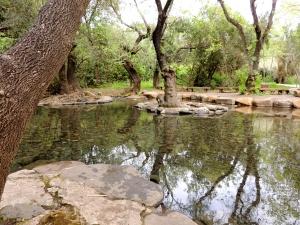 Still waters spring 3747