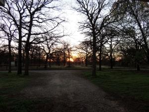 Sunrise drive 3337