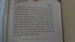 Jesus Calling Devotional - June 28th