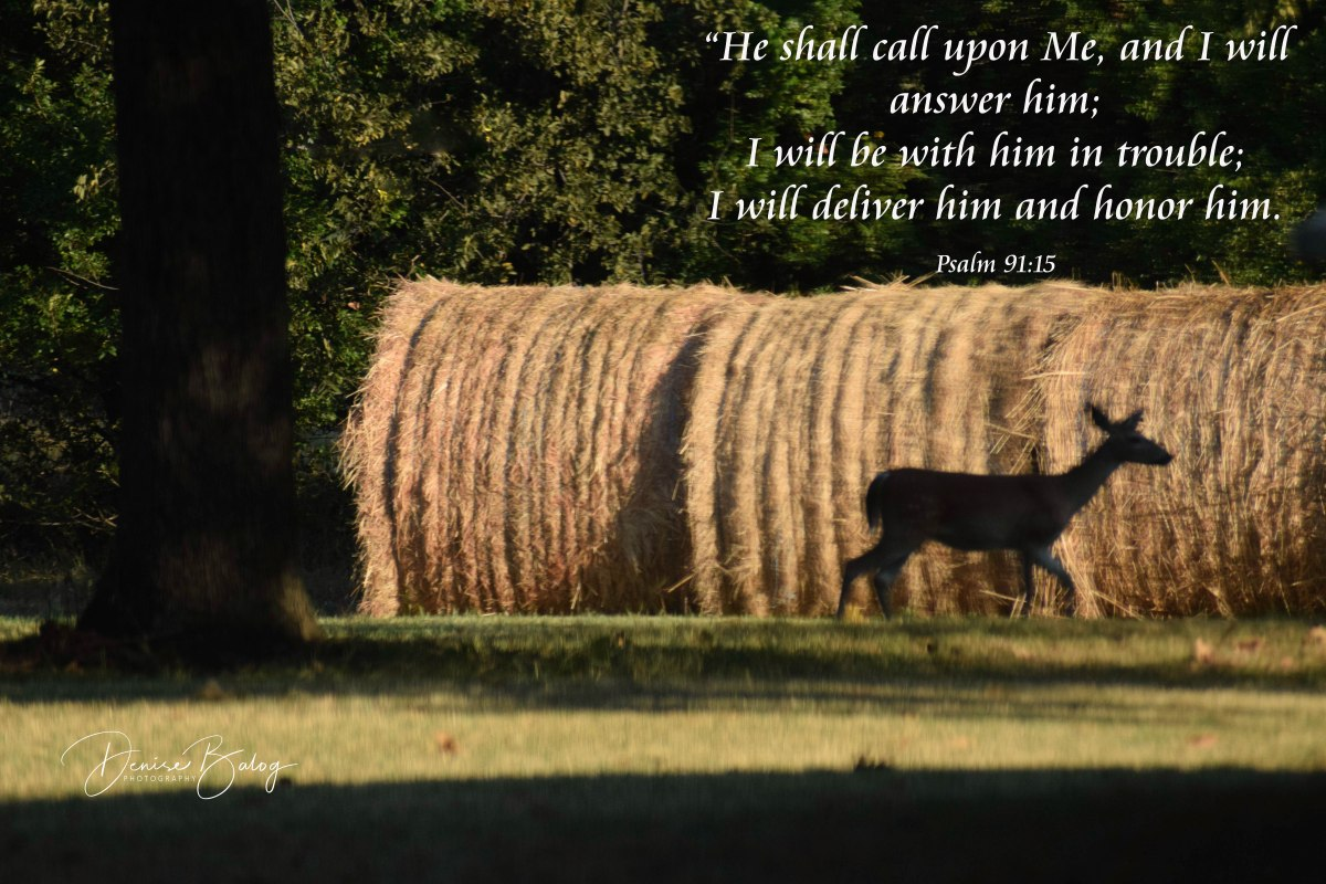 Psalm 91:15 – He Will Answer